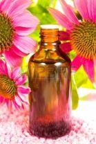Echinacea-purpurea-con-una-botella-de-vidrio
